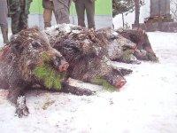 Uspešan lovni dan