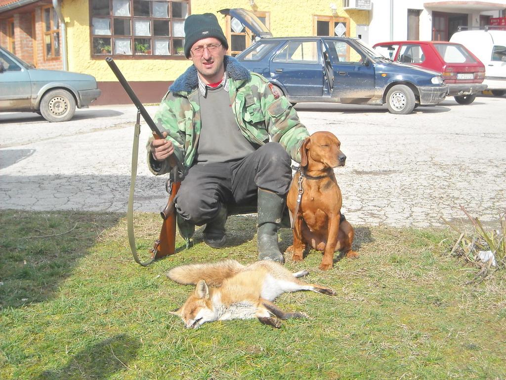 Odstreljena lisica