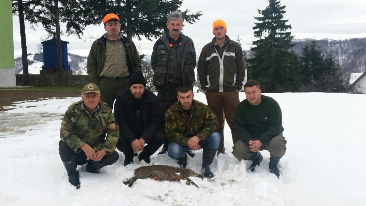 Lov divljih svinja, Gornji Dubac 01.12.2015.godine