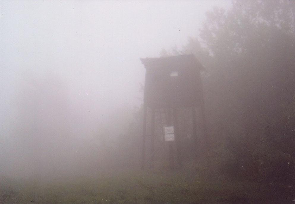 Lovačka čeka u magli