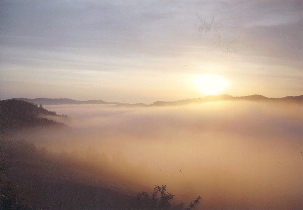 """Jutarnja magla u lovištu """"Dragačevo"""""""