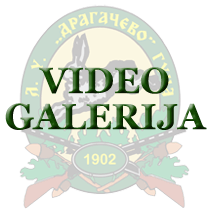 Video galerija